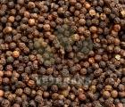 Brown Pepper
